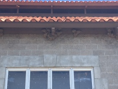 Swallows nests at Etude
