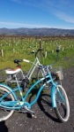 Biking in Napa for Calamari and Hazelnut Dacquoise